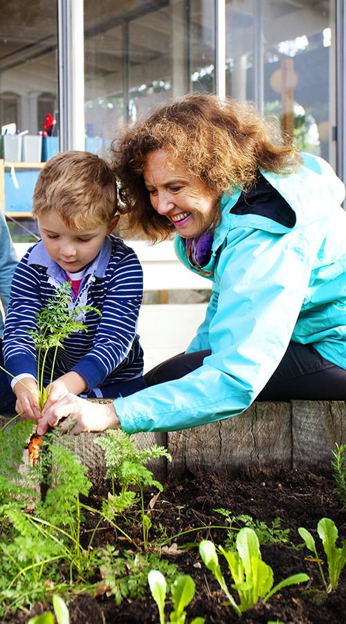 Michele-veg-garden-500x900